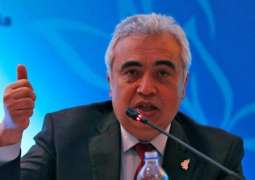 IEA Chief Says Germany's Coal Phase-Out Plan to Have Minimal Effect on Energy Market