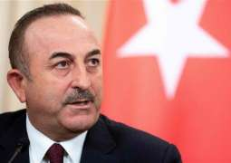 Turkish Foreign Minister Says Final Ceasefire in Libya Depends on Haftar