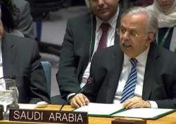 المملكة تؤكد رفضها التدخلات الخارجية في الشأن الليبي