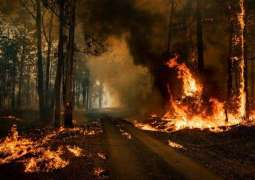 Australia's Bushfires Very Likely Sparked by Global Warming Despite Denial