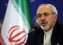 EU Yet to Carry Out 1st Transaction Via INSTEX One Year After Mechanism's Launch - Zarif