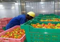 DP World expands Rwanda's consumer goods portfolio