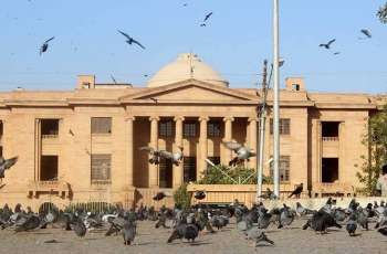 Sindh High Court (SHC) issues notice to EC, others in Karachi local body elections case