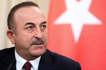 Turkey to Continue Efforts to Support Libya Ceasefire - Foreign Minister Mevlut Cavusoglu