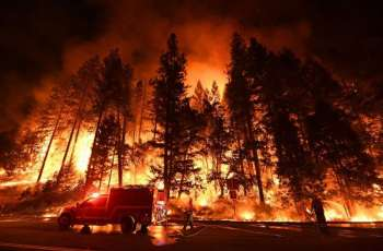 Trump Admin. Exaggerates Emissions From California Fires to Promote Logging - Reports