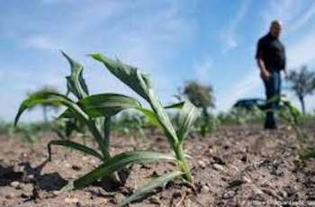 Agri sector recovery efforts hailed