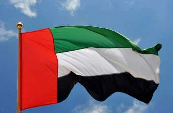 UAE, Mauritania discuss cooperation in security fields