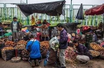 Federal government prepares legal bill for street vendors