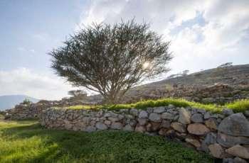 WAM Feature: Valleys, dams, mountains turned RAK into beautiful oasis