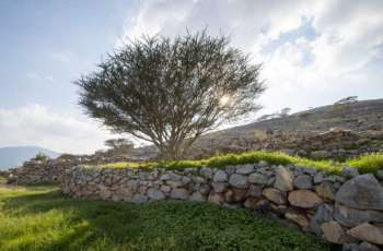 WAM Feature: Valleys, dams, mountains turned RAK into beautiful oasis