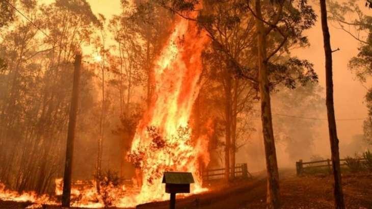Australia bushfires: Mega blaze likely on Friday evening