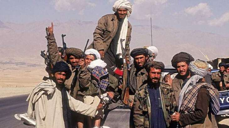 Taliban Capture Afghan Arghandab District in Country's South - Spokesman