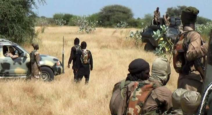 Eight Servicemen Killed, 5 Injured in Militant Attack in Northern Nigeria - Reports
