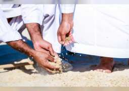 Environment Agency - Abu Dhabi to scatter seeds of native wild plants across emirate