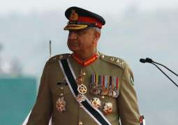 Kashmiri peoples' struggle is destined to success despite ordeal: Army Chief