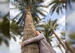 Visitors to experience 'Singing Trees' immersive installation at Louvre Abu Dhabi