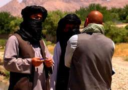 Watchdog Calls US-Taliban Deal First Step to End 'Successive War' in Afghanistan