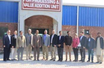 Dutch delegation calls on UVAS Vice-Chancellor