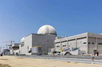 UAE's Nuclear Energy Push Will Not Lead to Development of Nuclear Weapons - Envoy to IAEA