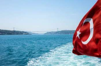 Turkey to Introduce Visa-Free Regime With 6 European States in March - Foreign Ministry