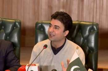 Providing jobs to educated youth is top priority of government ; Murad Saeed