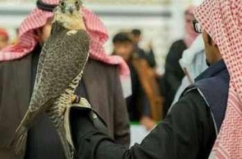 مهرجان الصقور بـ الحدود الشمالية.. ملتقى الصقارين في المملكة ودول الخليج