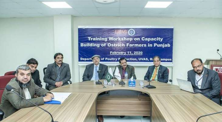 UVAS holdscapacity building training workshop ofostrich farmers at Ravi Campus Pattoki
