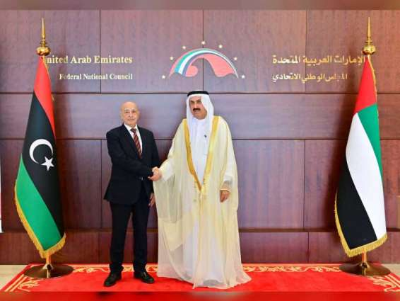 Emirati people support Libyan people in facing terrorism, foreign intervention: Saqr Ghobash