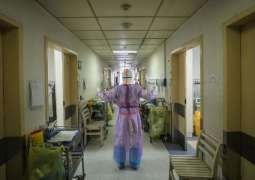Indonesia Registers 1st Two Cases of Coronavirus - President