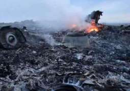 New Witnesses May Appear During MH17 Crash Judicial Proceedings - Dutch Prosecutor