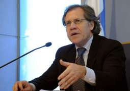 OAS Chief Wins Reelection, Vows to Support Member States Amid Virus Crisis