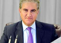 CPEC project to go ahead despite global pandemic: Shah Mehmood Qureshi