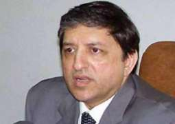 Afghanistan Able to Create Unity Gov't - Senior Pakistani Lawmaker