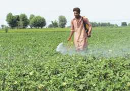 Fertilizers, agricultural machinery and optical shops are opened in Punjab amid Coronaviru fears
