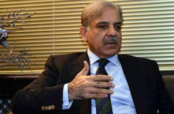 Shehbaz Sharif expresses concerns over depreciation of local currency against US dollar