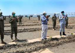 """""""Pakistan Navy Launches Mangroves Plantation Campaign 2020 For Greener Pakistan"""""""