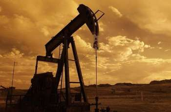 Omani Oil Minister Expects Oil Price at $30-40 Per Barrel in Q4 of 2020