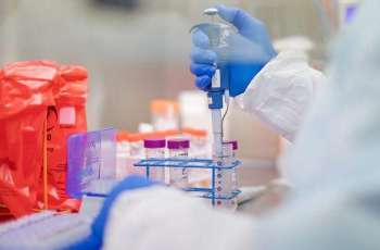 Michigan Sees Over 1,000 Coronavirus Cases Daily, Death Toll Rises to 337 - Governor