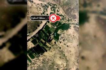 Houthi-fired ballistic missile fell in Yemeni territory
