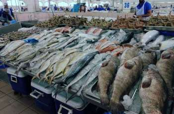 ADAFSA issues circular to regulate Abu Dhabi fish markets work