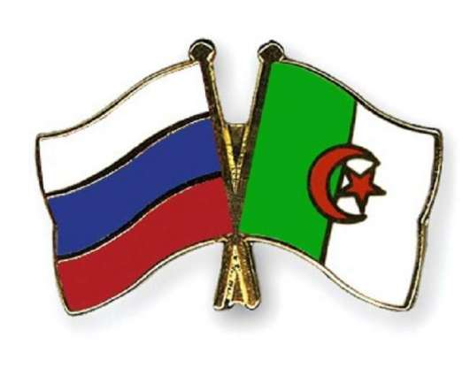 Algeria, Russia Discuss Cooperation in Industry, Mining - Industry Minister