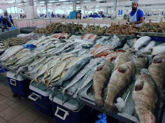 ADAFSA issues circular to regulate Abu Dhabi fish markets work