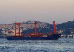 Russia Might Reciprocate Turkish Ban on Cargo Carriers on Monday - Transport Ministry