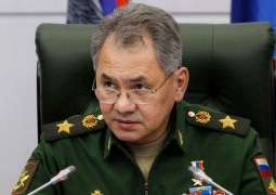 Shoigu, Parly Discuss COVID-19 Response - Russian Defense Ministry