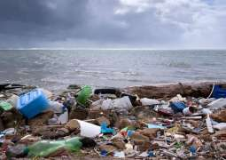 COVID-19-Linked Ocean Pollution Risks to Become Global Problem - French NGO