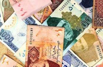 Currency Rate In Pakistan - Dollar, Euro, Pound, Riyal Rates On 24 May 2020