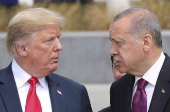 Erdogan Discusses Situation in Syria, Libya With Trump - Ankara