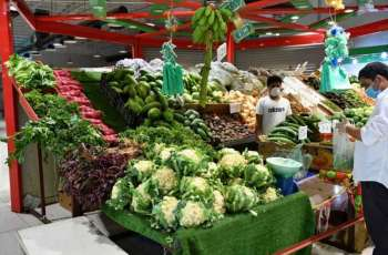 المواد الغذائية والاستهلاكية في جازان .. وفرة واستقرار في الأسعار