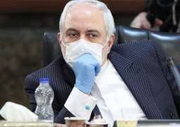 Plane With Iranian Scientist Detained in US En Route to Homeland - Zarif