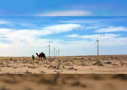 Throughout COVID-19 recovery, 'plummeting' clean energy costs can help climate action: UN report